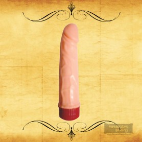 Magic Silicone Realistic Vibrator RSV-048
